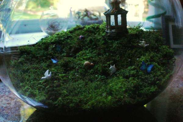 moss terrarium with miniatures