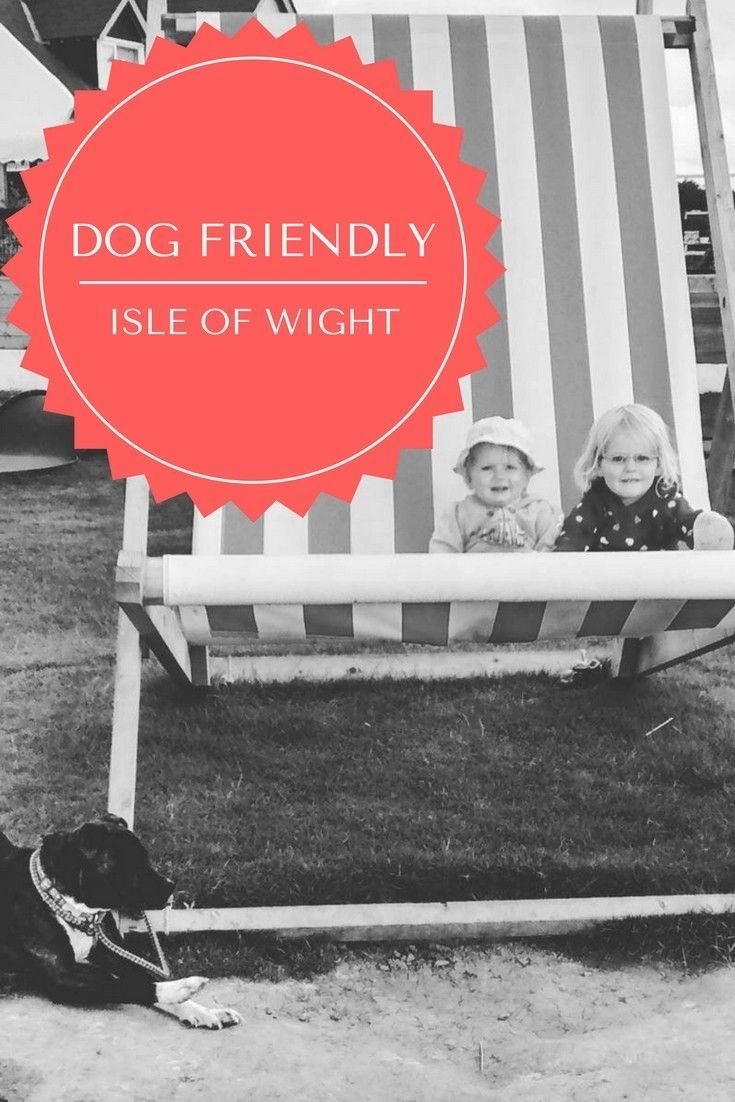 The Isle of Wight with dogs (With images) Isle of wight