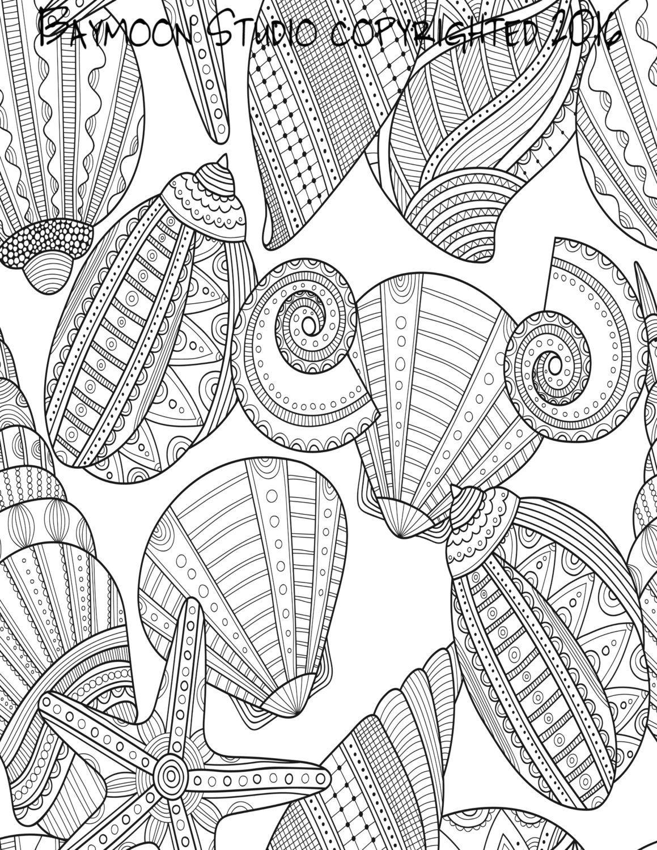 Seashells By The Seashore Coloring Page Printable BAYMOONSTUDIO