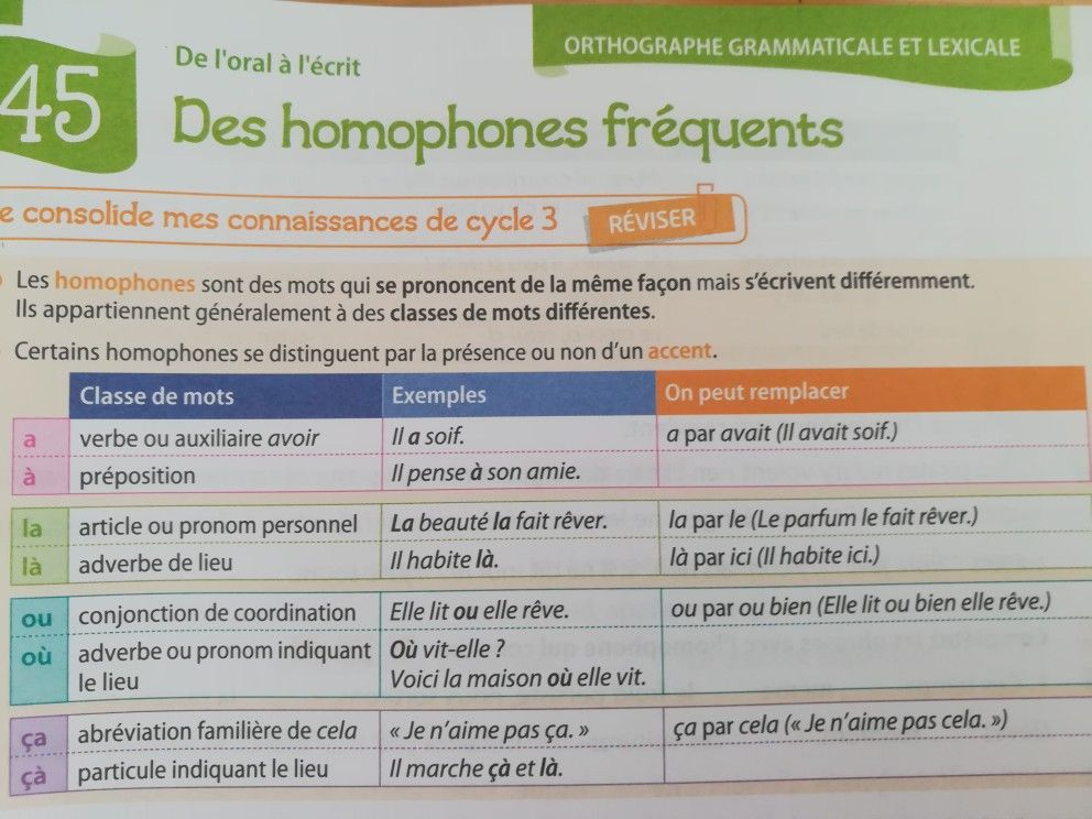 Epingle Par Sammi Weiss Sur For Gifting Suggestions Grammaire Francaise Les Homophones Orthographe