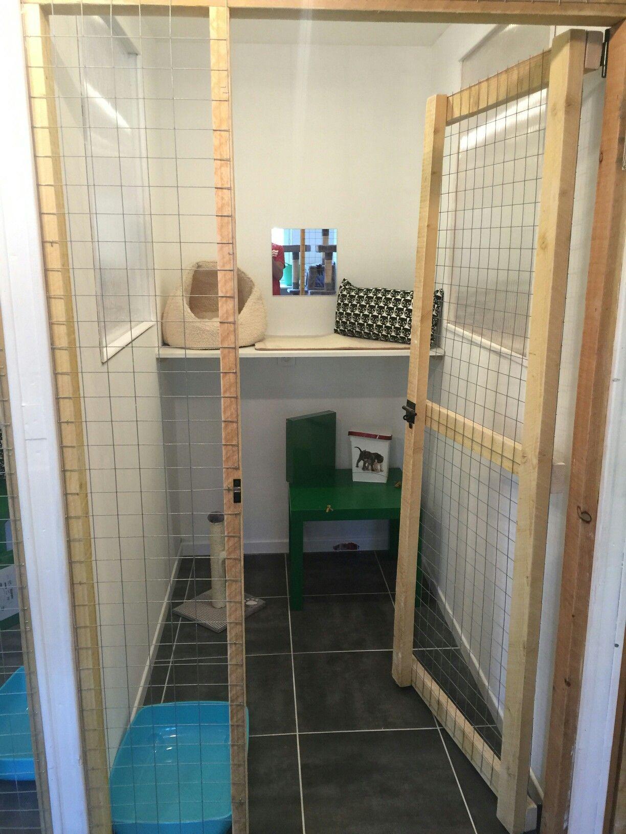 Gatera Cat Enclosure Indoor Cat Enclosures Cat Cages Indoor