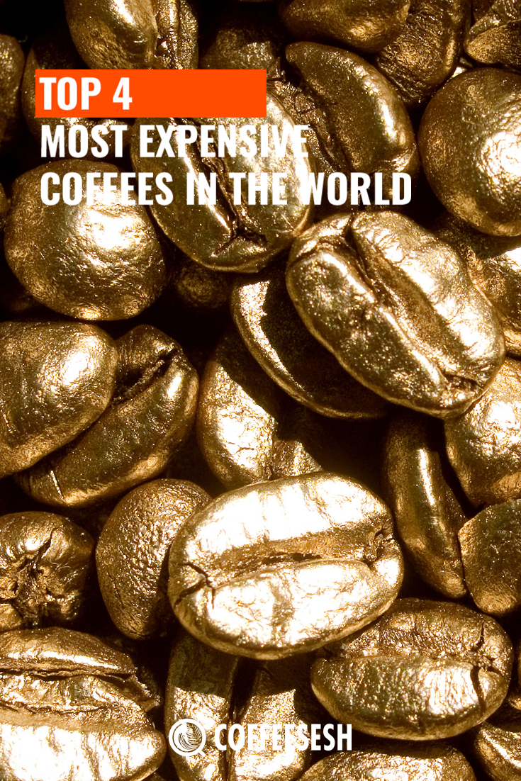 Top 4 Most Expensive Coffees in the World via coffeesesh