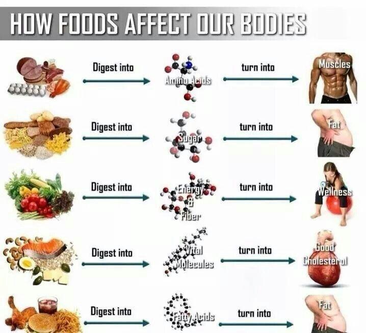 Health and wellness!