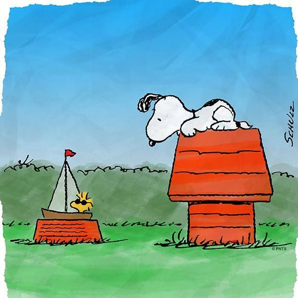 Snoopy On Doghouse And Woodstock In Snoopy S Dog Dish In Sailboat