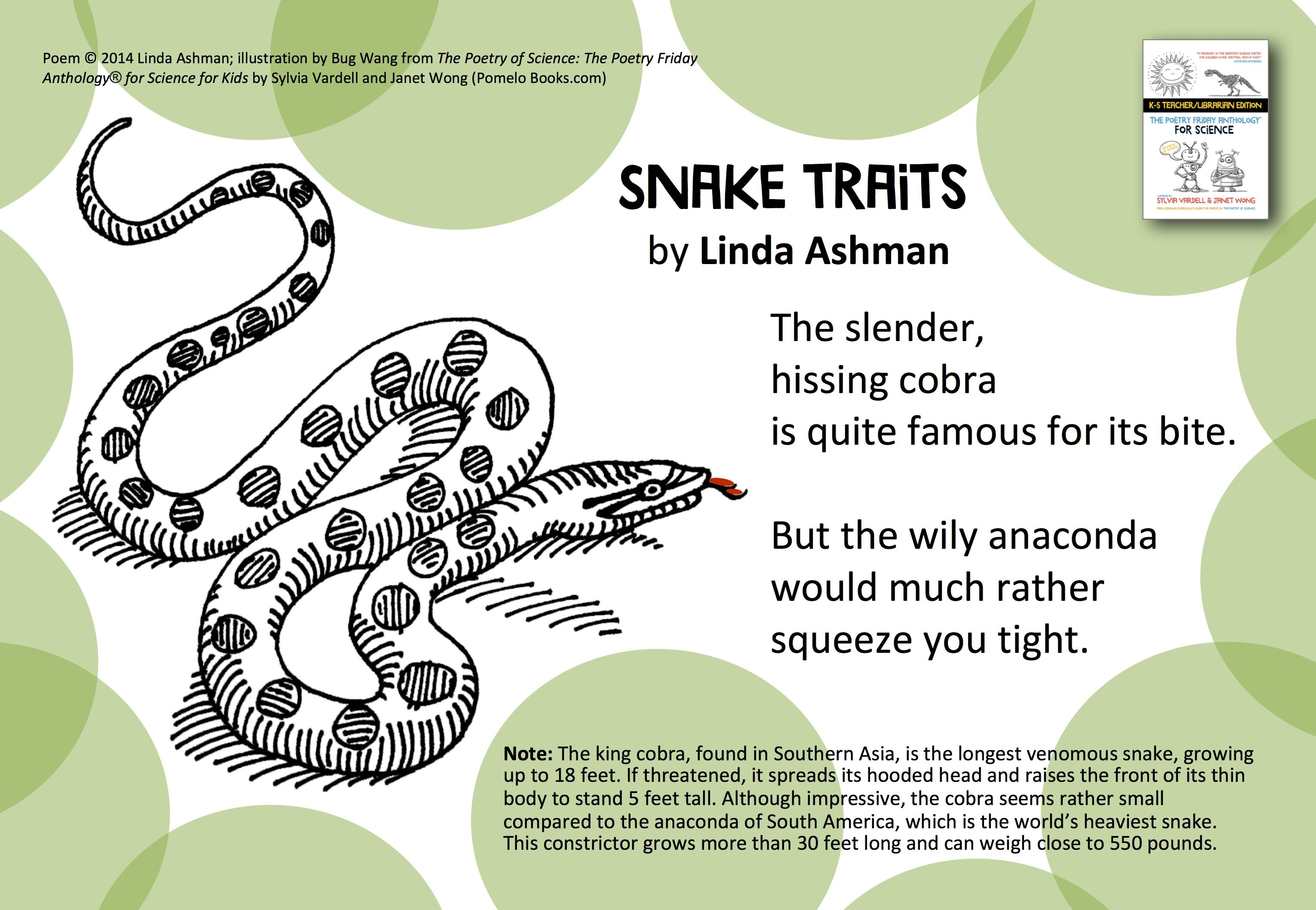 Studying Adaptation And Traits Share This Poem Snake