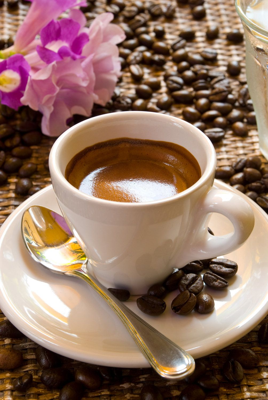 Cafe' Supremo Espresso Fresh Roasted Espresso 5 lbs