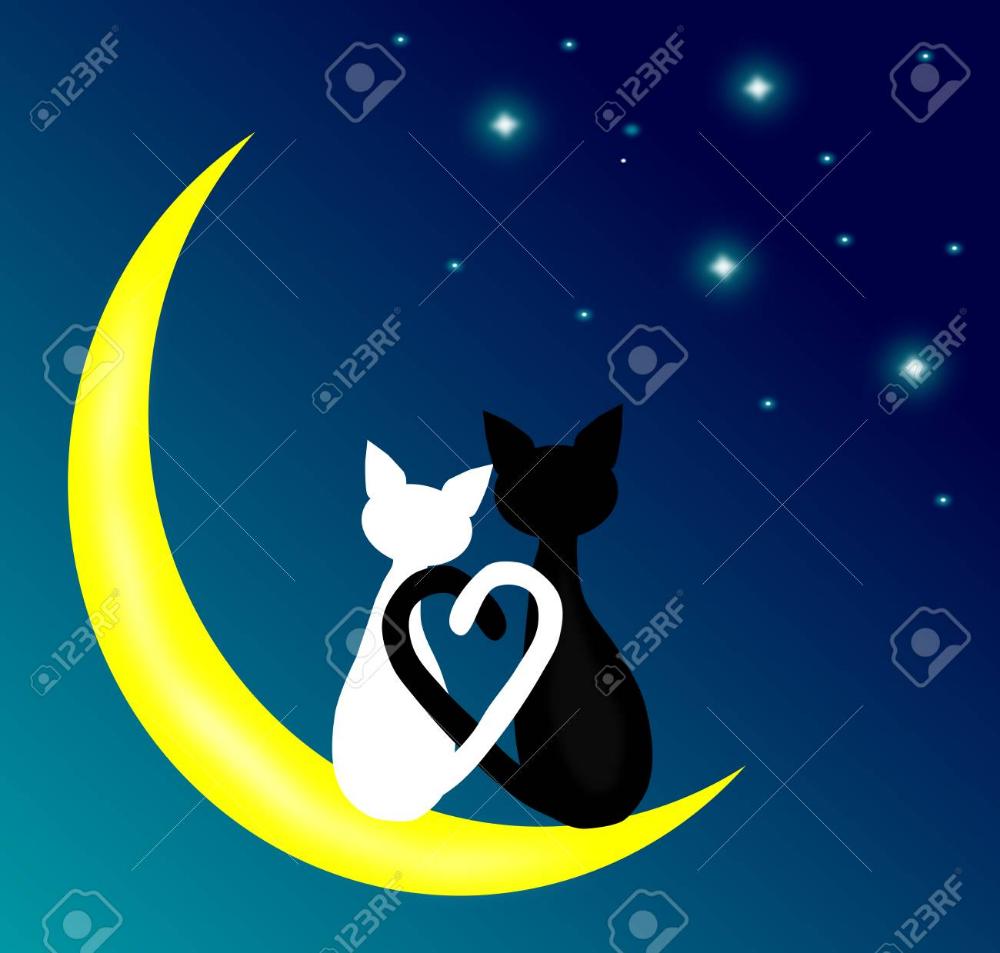 Dwa Koty Kolorowanka Szukaj W Google With Images Kolorowanka Malarstwo Pastele