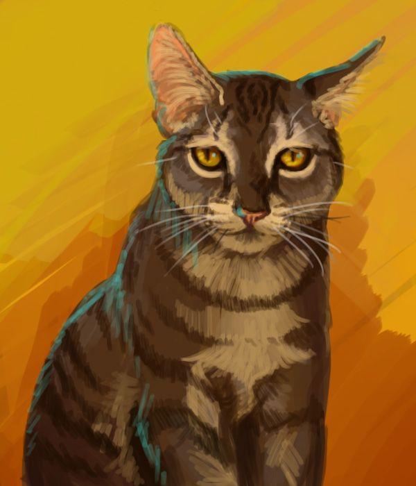 Výsledek obrázku pro warriors cats brambleclaw