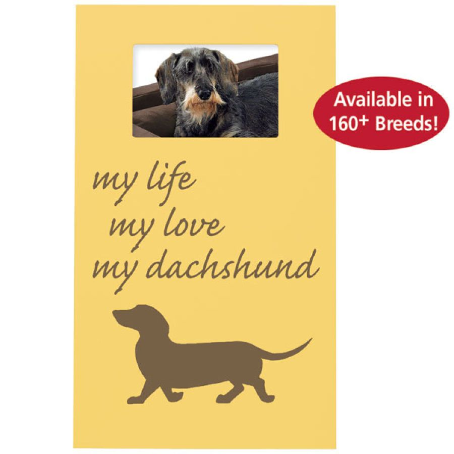 My Life My Breed Frame Dog Shop Dachshund What S New Today