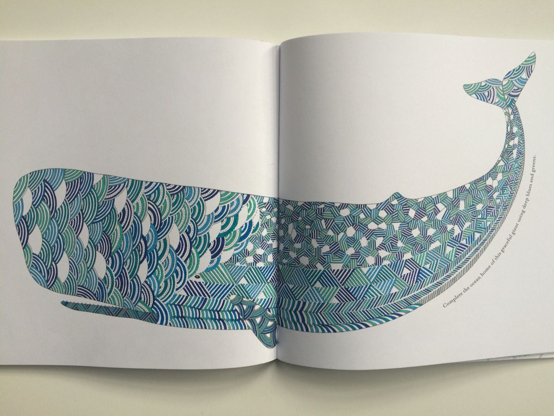 Animal Kingdom By Millie Marotta Colouring Book