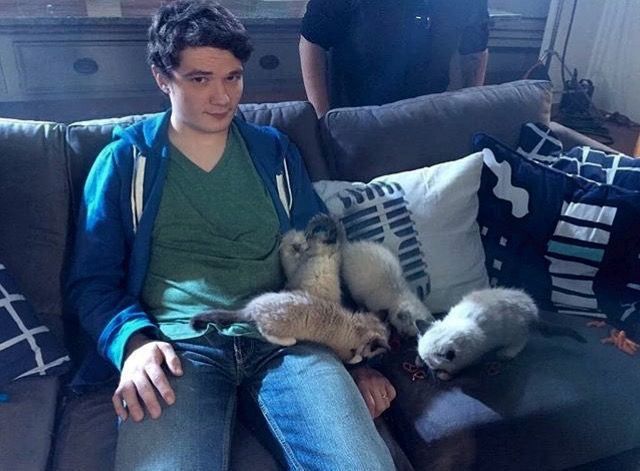 Michael Jones With Kittens On His Lap I Don T Know If There S Ever Been Anything More Adorable Than This Achievement Hunter Rooster Teeth Red Vs Blue