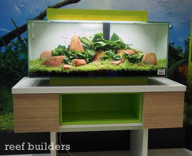 Hagen Aquarium   Hagen 19 Gallon Edge Aquarium Coming Soon Pets Pinterest