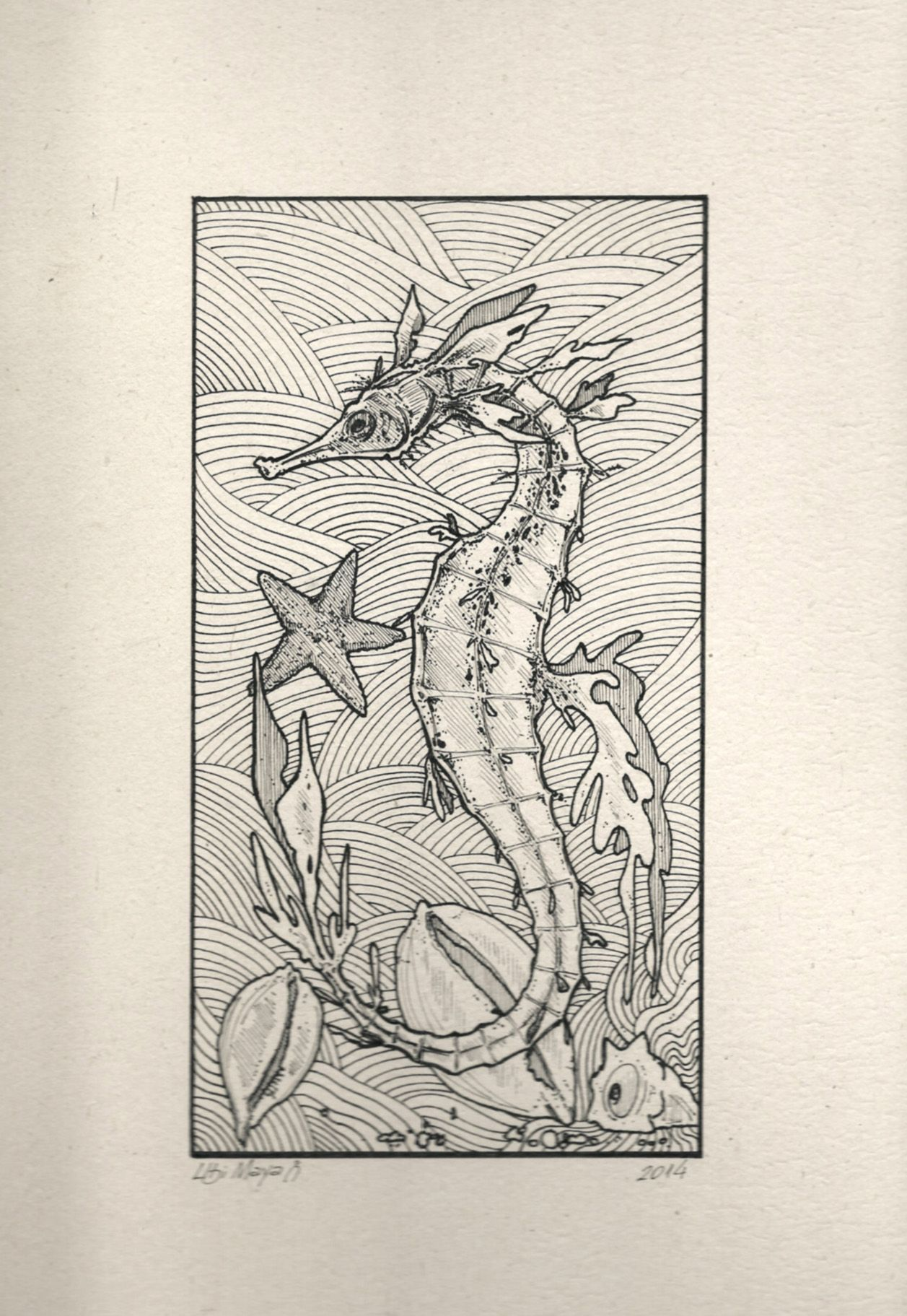 HIPPOCAMPUS RAMULOSUS II (bico de pena s  papel 625g m² 47553bd778