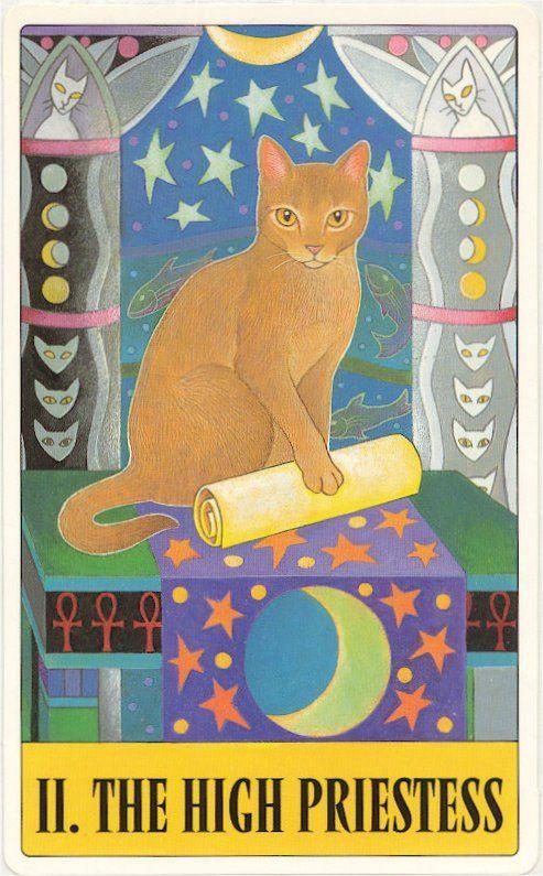 Cat's Tarot - High Priestess