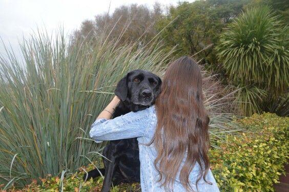 Un amor incondicional #Dog #Animal #Labrador
