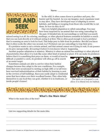 Sixth Grade Reading Comprehension Worksheet Hide And Seek Reading Comprehension Worksheets Reading Comprehension Sixth Grade Reading 6th grade reading worksheets printable