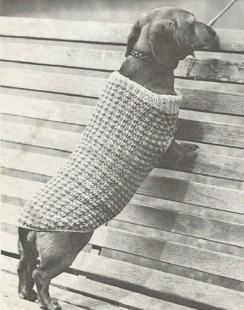 Vintage dog coat dachshund dog sweater small dog jumper knitting vintage dog coat dachshund dog sweater small dog jumper knitting pdf pattern by craftykittencorner bankloansurffo Gallery