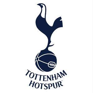 Tottenham Hotspur Stadium Tour | Premier league teams ...