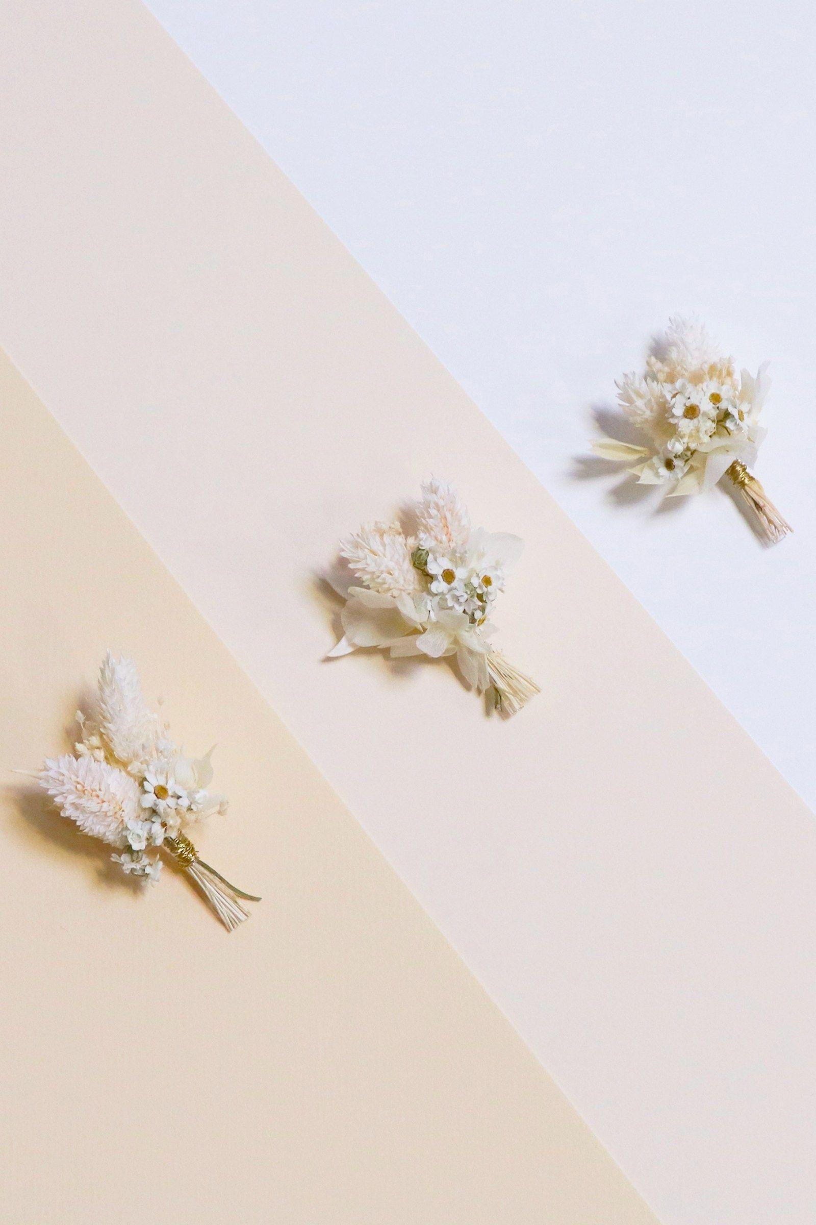 Comment Faire Secher Une Rose Fraiche monsieur marguerite est le premier flowershop de france et
