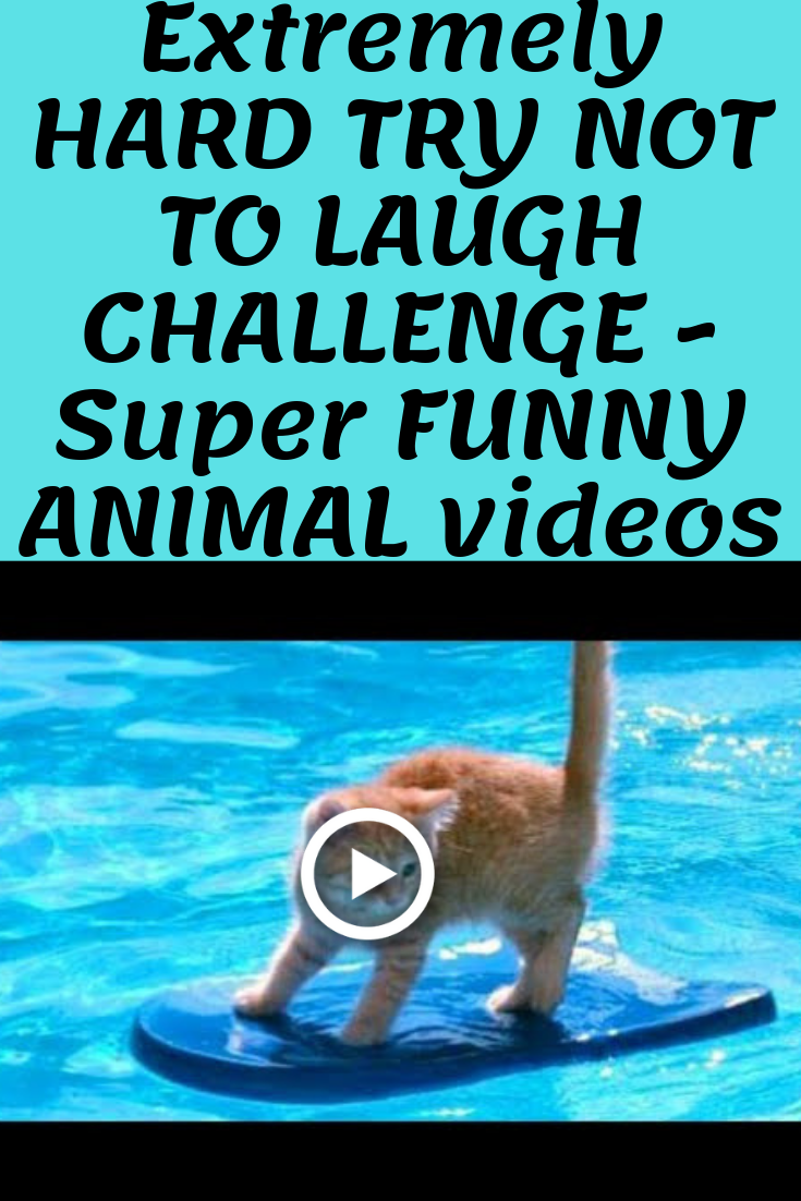 Extremely HARD TRY NOT TO LAUGH CHALLENGE Super FUNNY