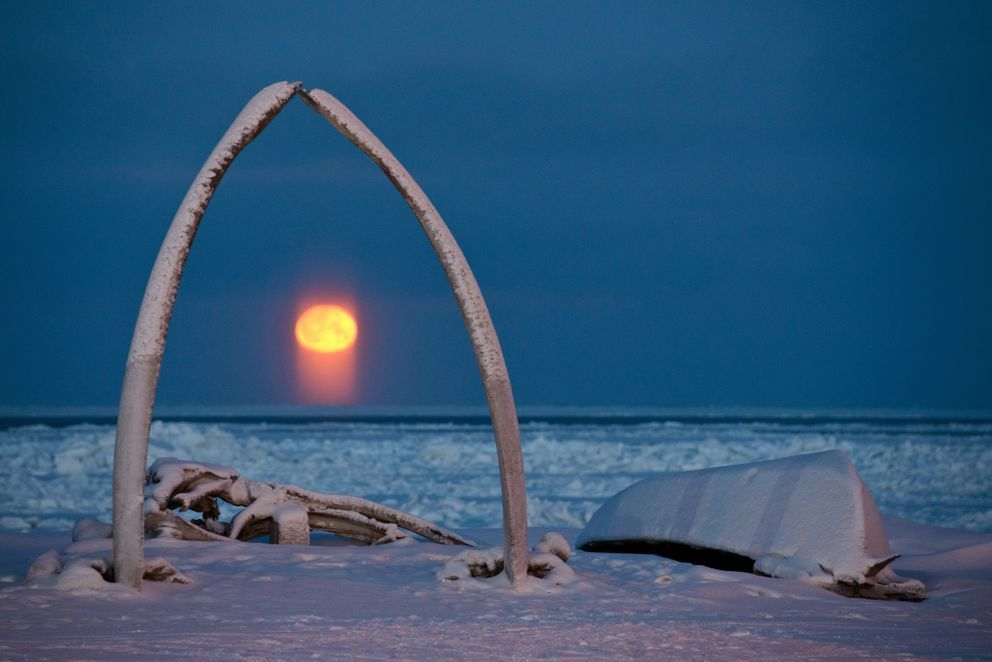 Winter in the Arctic Snapshots from a land of endless