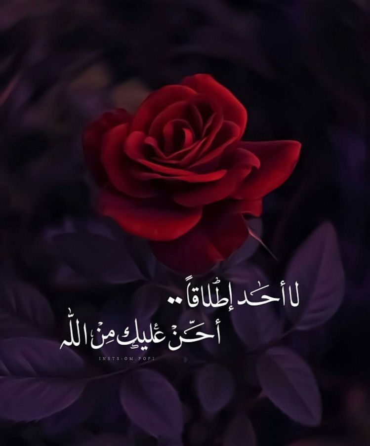 Image Shared By Aya Find Images And Videos About ﻋﺮﺑﻲ كلمات And حزن On We Heart It T Quran Quotes Love Islamic Love Quotes Quran Quotes Inspirational