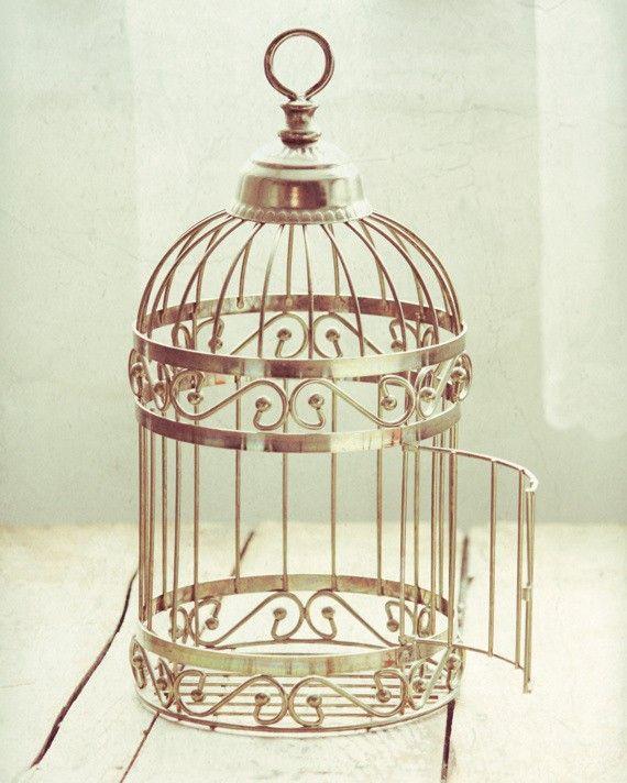 et cette oiseaux vous ne pouvez pas changer attrapez moi si vous voulez inspiring. Black Bedroom Furniture Sets. Home Design Ideas