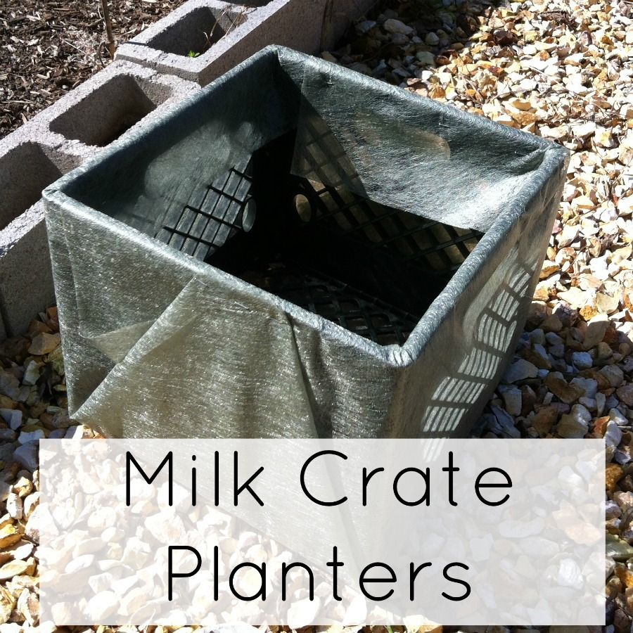 Milk Crate Planters How To Grow Vegetables Plastic Milk Crates Milk Crates Growing Vegetables