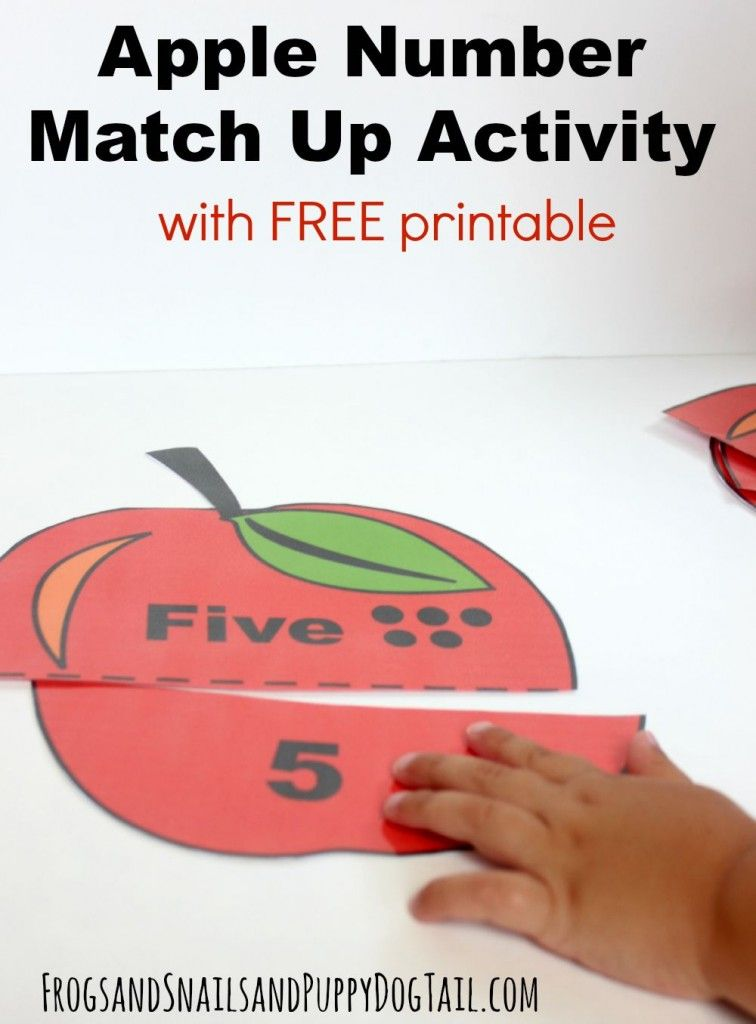 Apple Number Match Up Activity | Free printables, Activities and Number