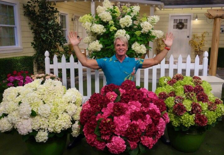 Phillip Watson On Qvc With Images Floral Wreath Floral Flowers