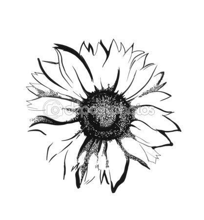 Simple Line Drawing Sunflower