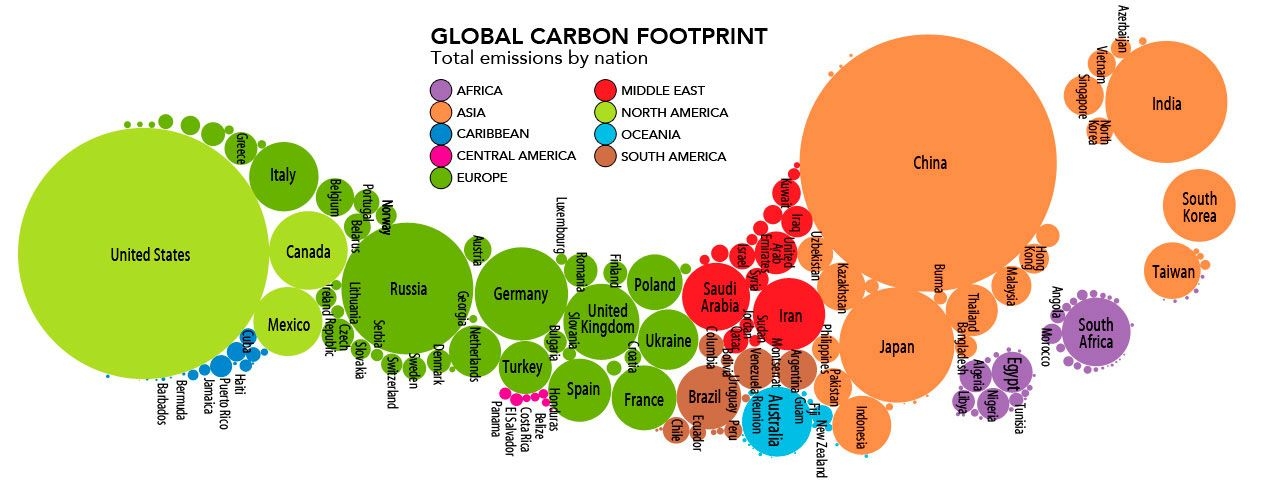 Image result for carbon footprint infographic