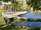 Plus proches d'un jardin aquatique que des piscines hollywoodiennes, les bassins naturels font de plus en plus d'adeptes. Douze arguments de choc pour s'autoriser à en rêver. Dossier Anne Valéry / Photos Patrick Smith (Juin 2011)...
