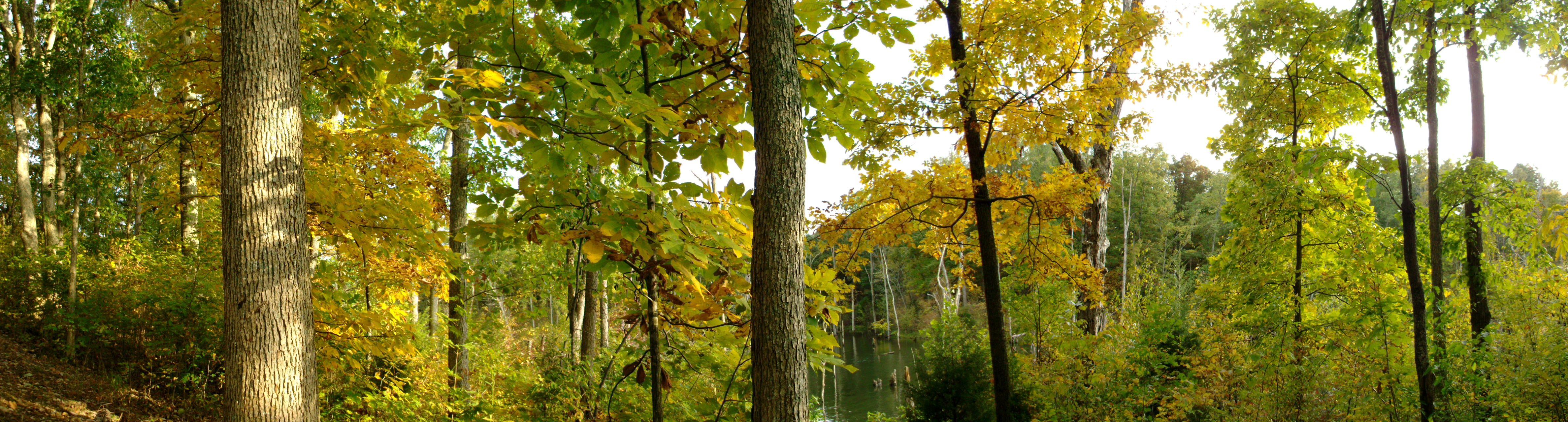Autumn at Cedar Creek Lake Kentucky