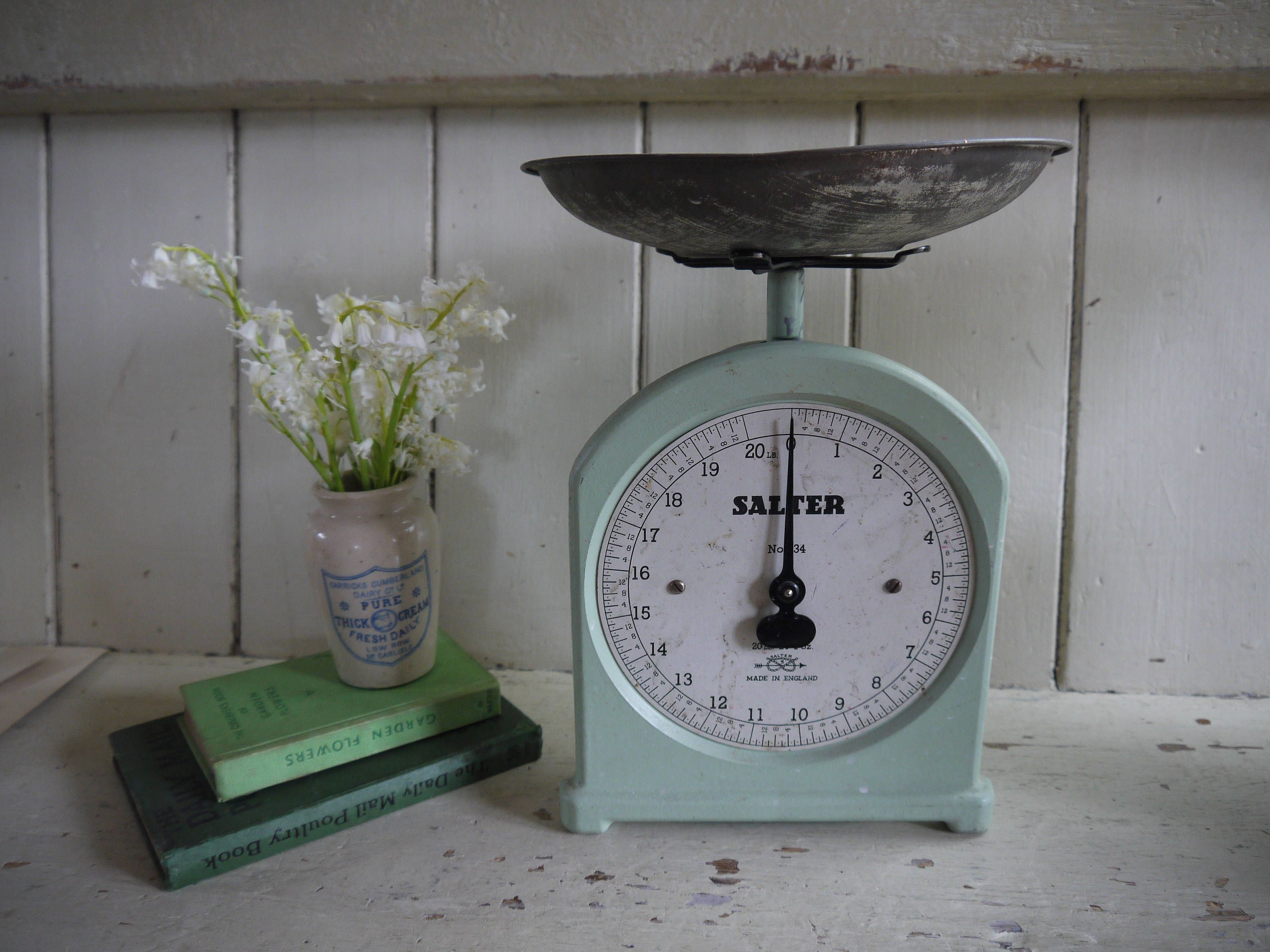 Rustic Weighing Scales Salter Pastel Green Farmhouse Style Kitchen Pastel Green Rustic