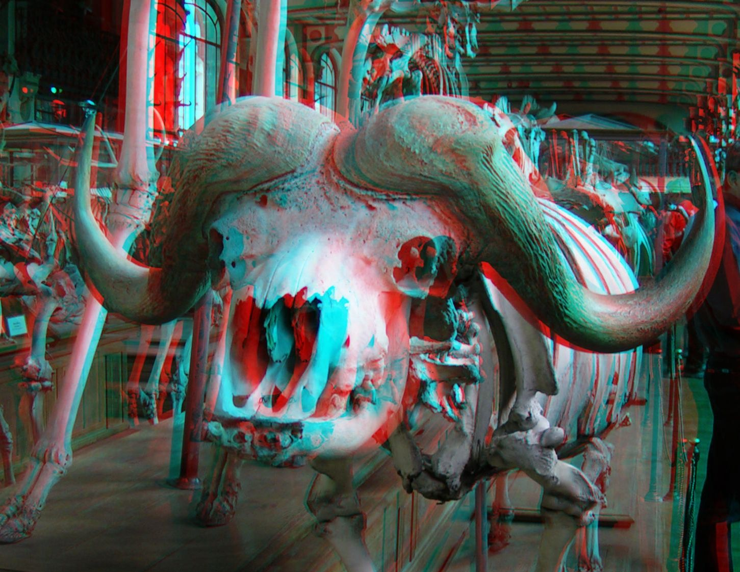 anaglyph photos - Google Search | COMIN AT YA! / (3D ...
