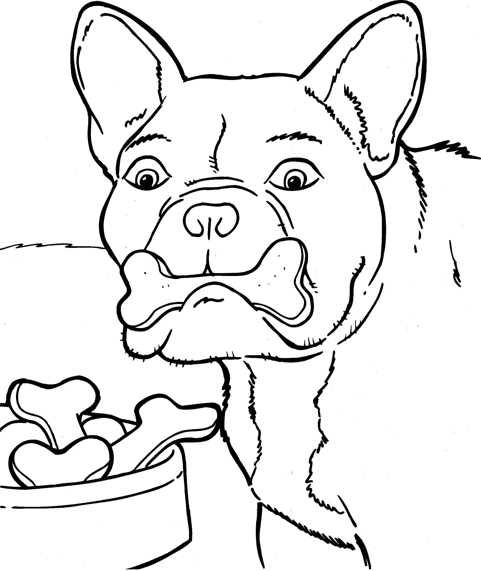 Kleurplaat Honden Kleurplaat 8867 Dog Coloring Page Coloring Pages Dog Pattern