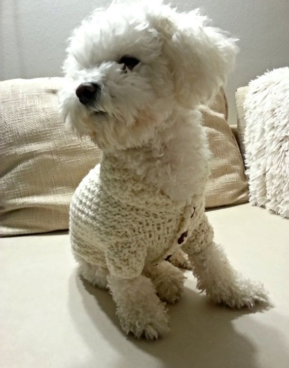 6ce9a6d3a454 Dog Clothes - Off White dog Sweater with Buttons and Collar