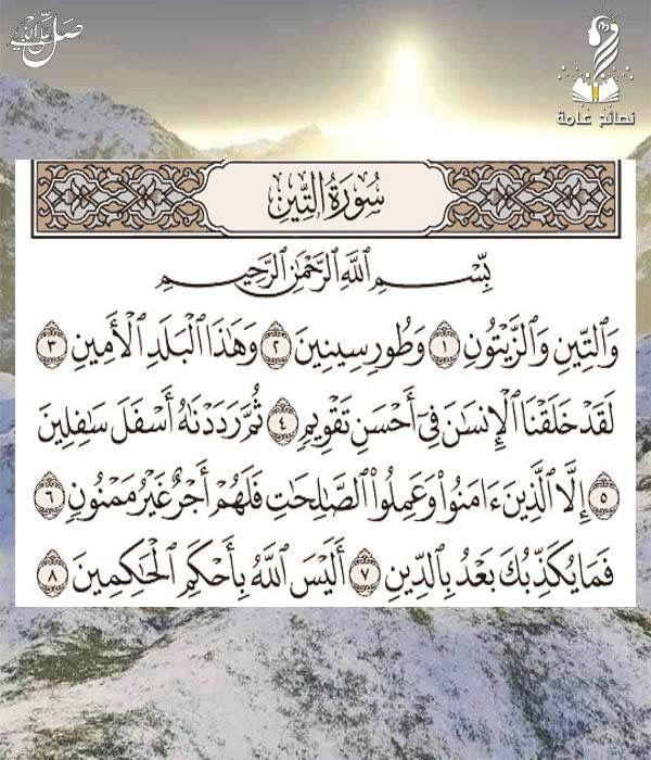 سورة التين Quran Book Holy Quran Book Architecture Collection