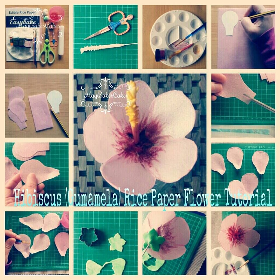 Hibiscus Wafer Paper Tutorial Wafer Paper In 2019 Wafer Paper