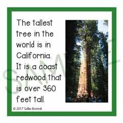 Trees Fun Facts Cards Fun Facts Trees For Kids Facts For Kids