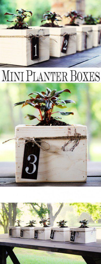Mini Planter Boxes