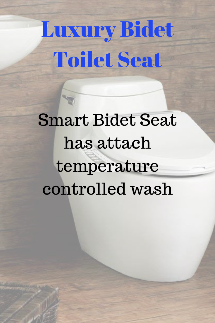 Best Bidet Toilet Seat And Combo For 2020 With Images Bidet