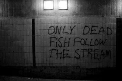 only dead fish follow the stream