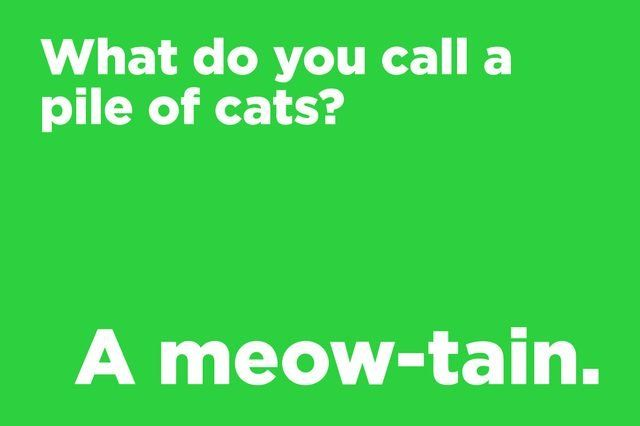 85 Corny Jokes Everyone Will Laugh at to Celebrate National Tell a Joke Day