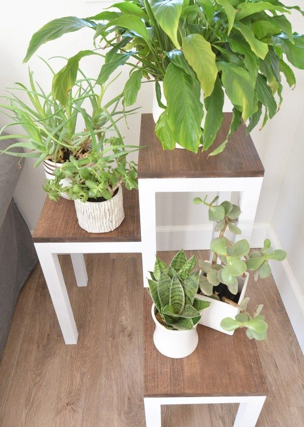 DIY Tiered Plant Stand | Centsational Style #diyplantstand