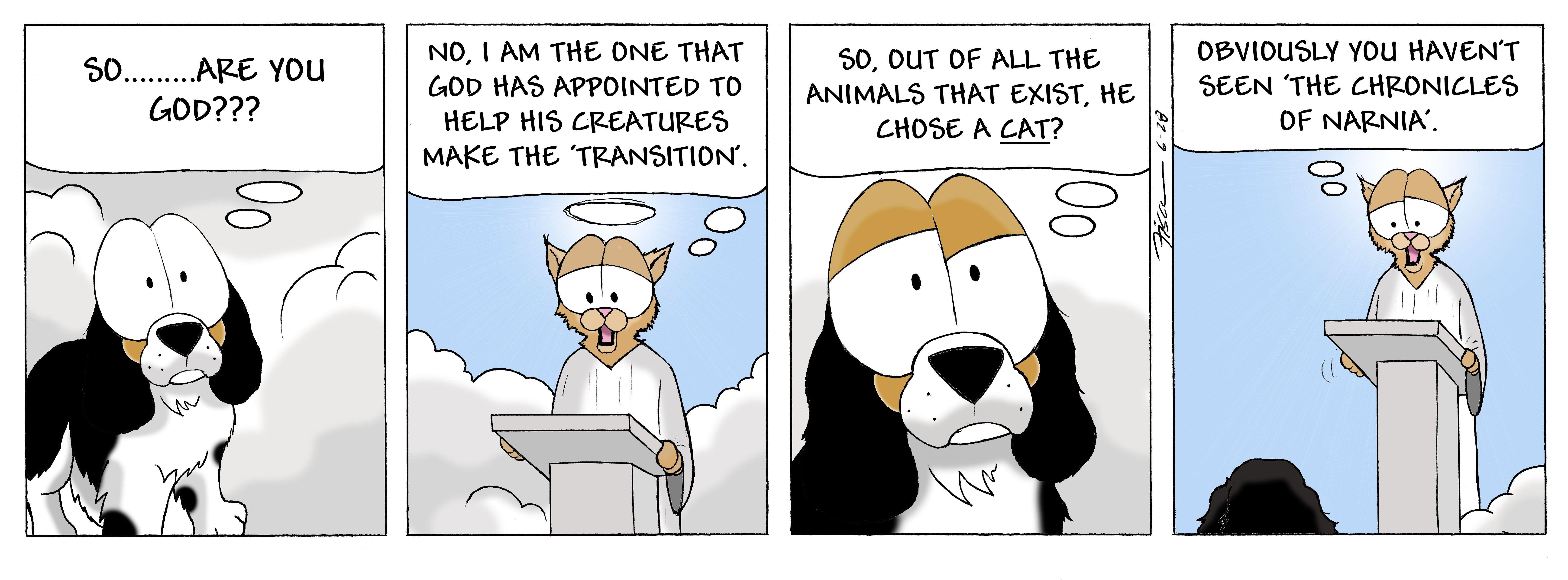 Knocking On Heaven S Door Cartoon Strip Narnia Cartoon