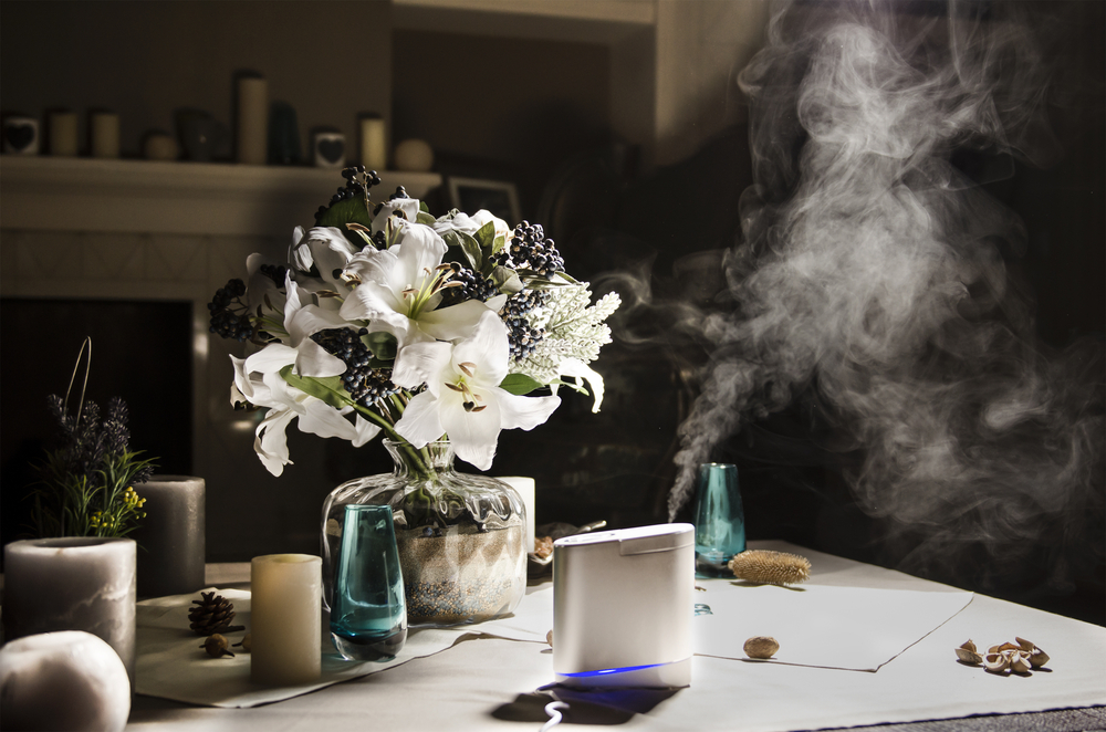 The Differences Between an Air Purifier and Humidifier
