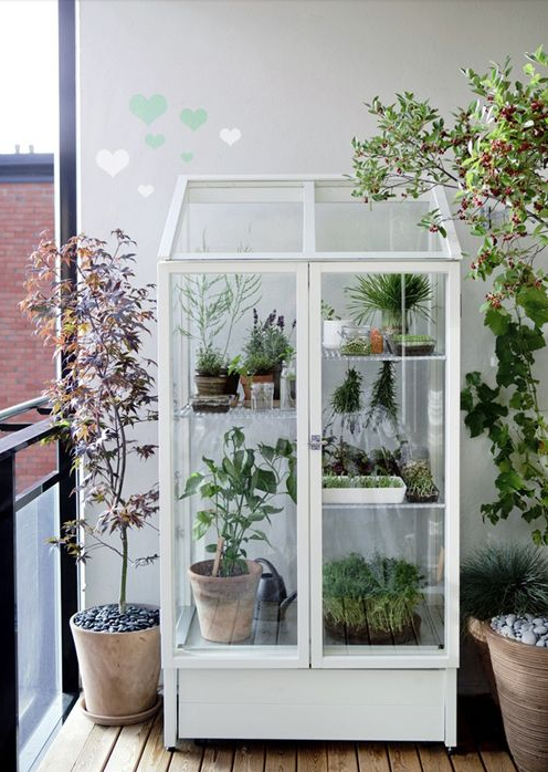 City Gardening Ideas