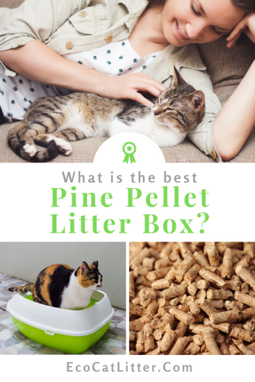 What Is The Best Litter Box For Pine Pellet Cat Litter In 2020